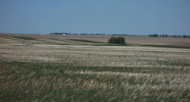 Alberta_Prairie