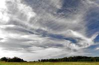 Cirrus_clouds