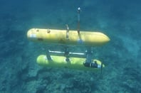 The Sirius Autonomous Underwater Vehicle