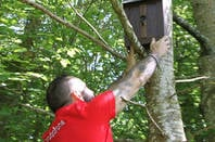 Vodafone bird box signal repeater