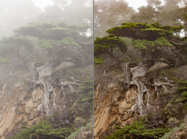 Lightroom DeHaze before and after