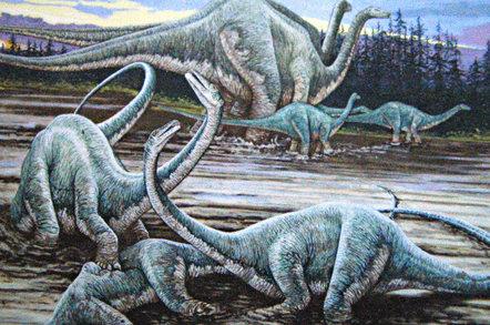 Diplodocuses. Pic: James St John