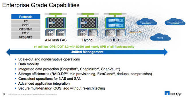 NetApp_Enterprise_Grade_Capabilities