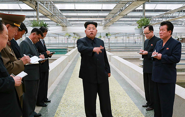 Kim Jong-un at the terrapin farm. Pic: Rodong Sinmun