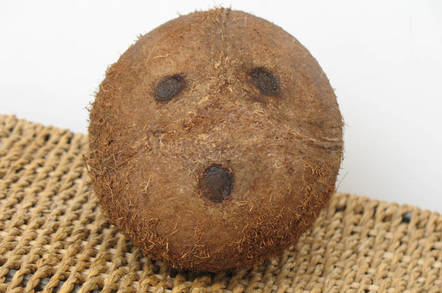 Coconut face by https://www.flickr.com/photos/22327649@N03/ cc 2.0 attribution https://creativecommons.org/licenses/by/2.0/