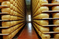 Grand Fromages at Reggio Parmagiano