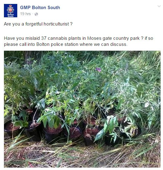 The appeal on the GMP Bolton Facebook page, with photo of the mislaid cannabis plants