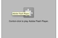 Flash disabled screen grab