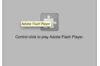 Flash disabled screen grab