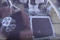 NASA Hedgehog