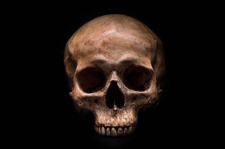 skull_648