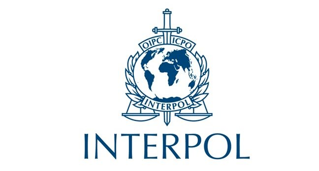 Image result for interpol