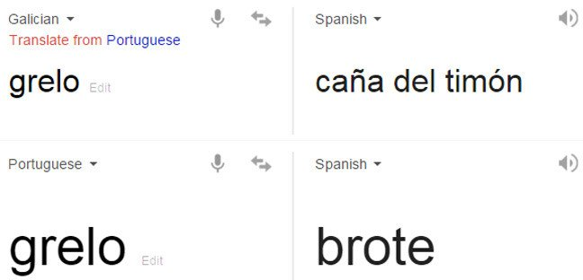 Google Translate results for grelo