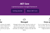 .NET Core, Microsoft's fork of the .NET Framework for cross-platform and open source