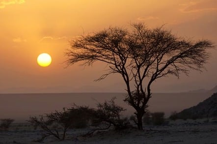 Sunset in Niger, a tree silhouetted against a sunset in the Sahara desert. Photo via Shutterstock