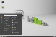 Mint 17.3 desktop
