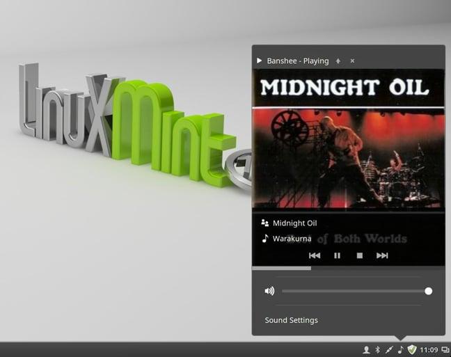 Mint 17.3 music