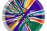 Pentaho_chord_visualisation