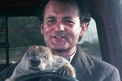 Bill Murray in the movie Groundhog Day. If you haven't seen it, it's about a man forced to endure reliving the same day over and over. Pic: Columbia Pictures