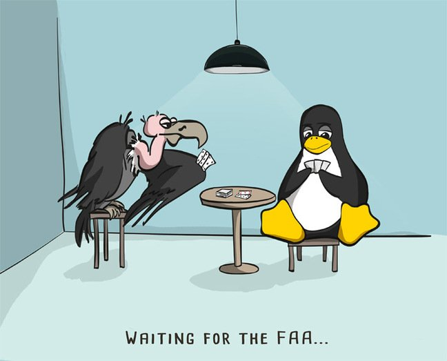 Cartoon of Vulture and Linux penguin playing cards