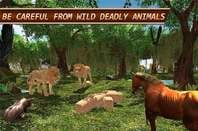 Screenshot from 'Life of Horse - Wild Simulator'