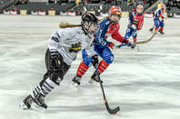 Ice_hockey_game