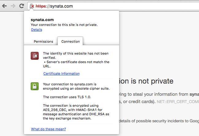 Synata and TLS 1.0