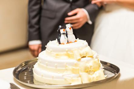 Penguin wedding cake, image via Shutterstock