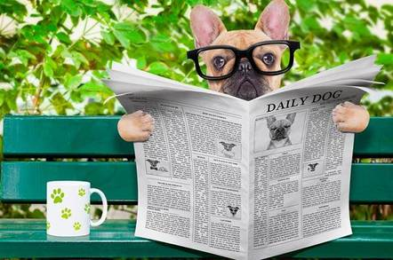 A dog wearing glasses, on a park bench reading the news paper