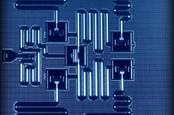 IBM quantum processor