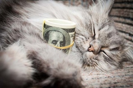 Tabby cat cuddles roll of one-hundred dollar bills. Photo by Shutterstock