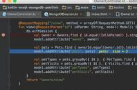 All IDEs based on JetBrains' IntelliJ IDEA are affected