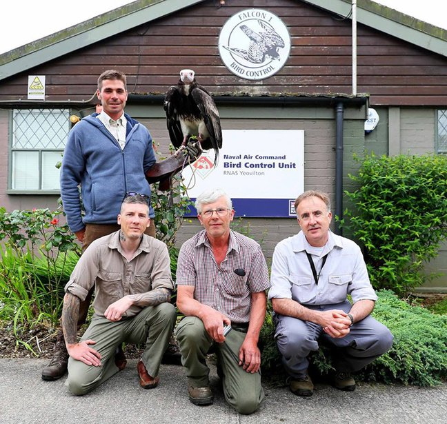 Members of Royal Naval Air Station Yeovilton's Bird Control Unit pose with Arthur