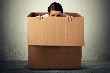 A person hiding in a box