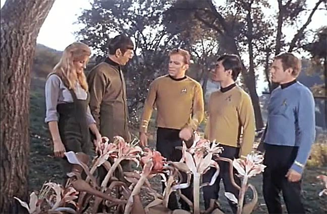 Star Trek This Side of Paradise