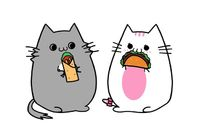 Cats eating a burrito and a taco