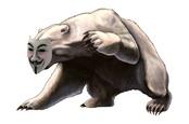 Fancy Bear Anonymous bear logo