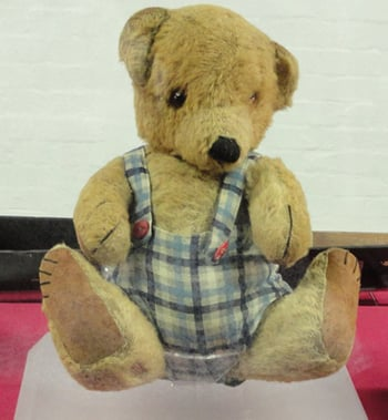 Turing's teddy, photo SA Mathieson