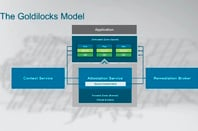 VMware project goldilocks model