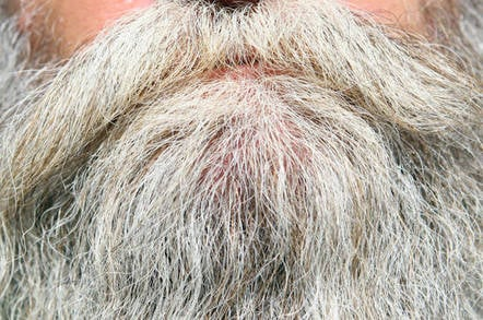 A grey beard