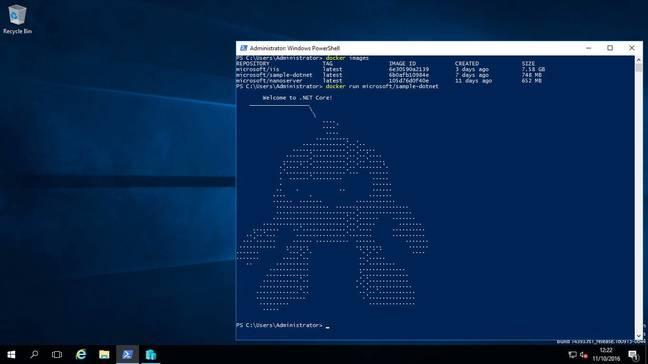 A Docker container running on Windows Server 2016