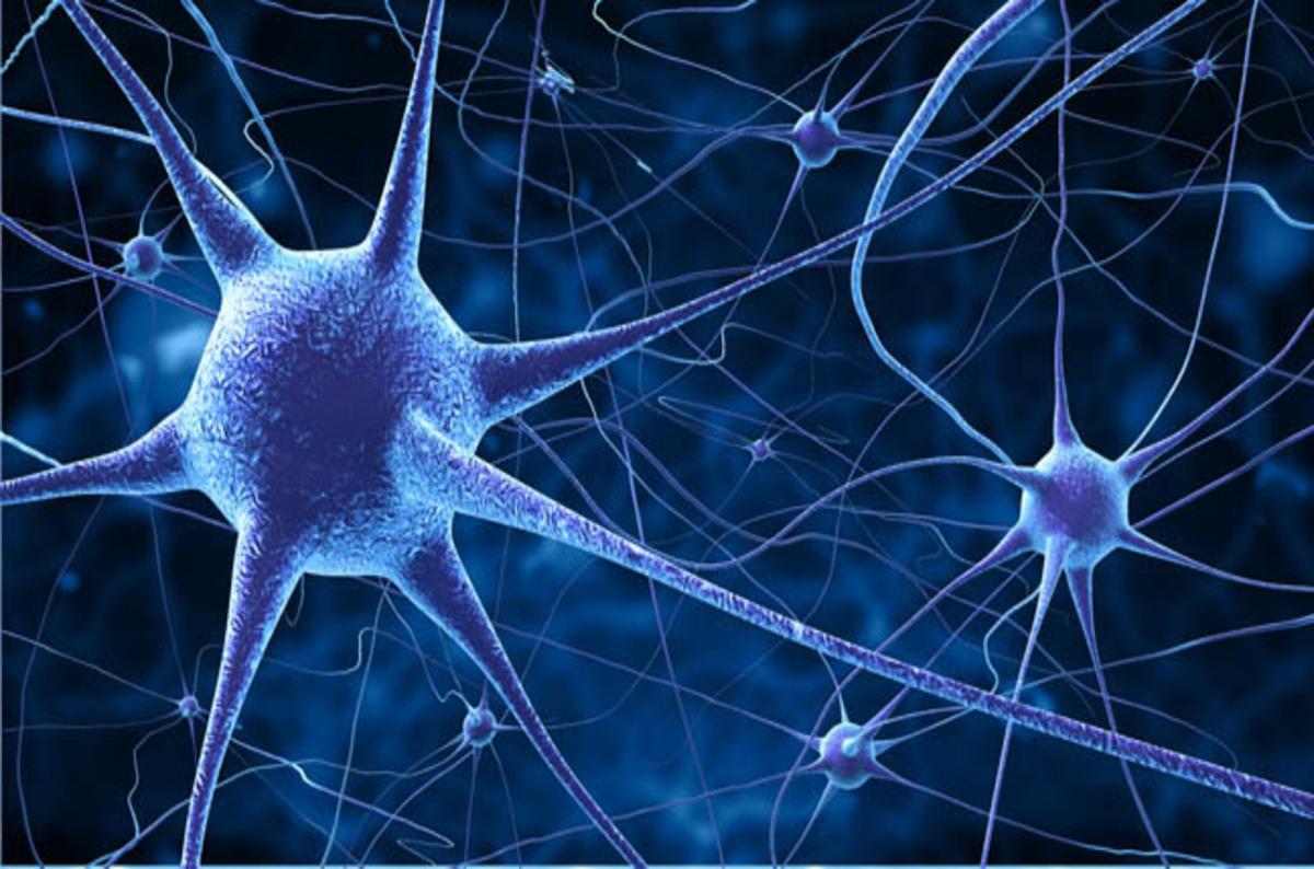 Sony open-sources NNabla neural network learnings