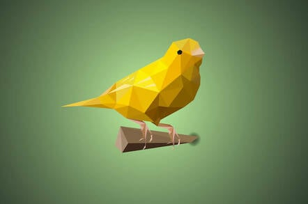 polygonal canary