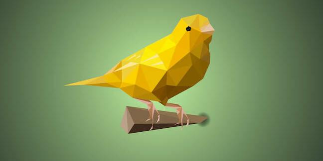 polygonal canary