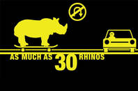 rhino warning pic. Pic via media centre at Yarra Trams