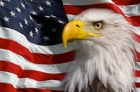 Bald eagle in front of an American flag. God Bless America.