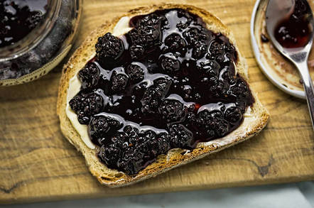 Blackberry jam on toast. Photo by shutterstock