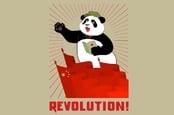 Chinese revolutionary panda