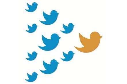 Twitter flock