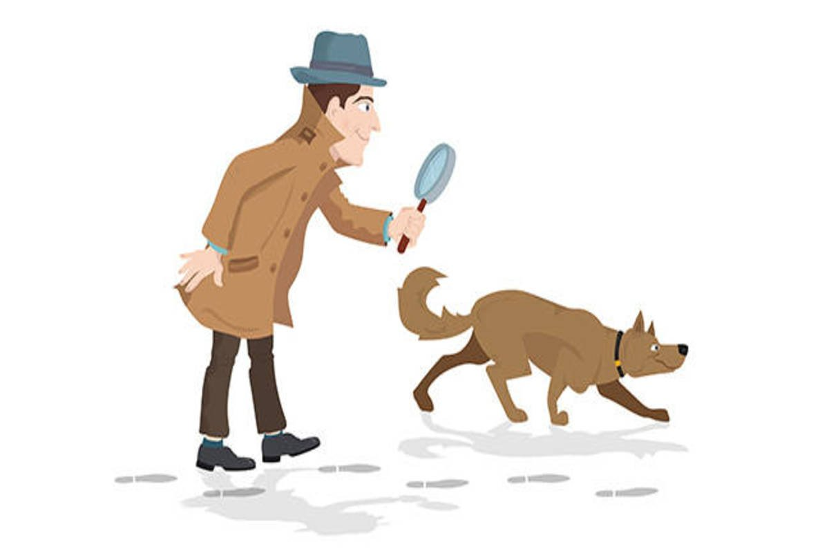 crime crime natural natural paper term Question crime scene sketch needed sketching from verbal description of crime  the dresser is composed of wood material in a natural oak color  term paper.